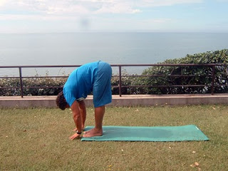 Posizione 3 - Hand to foot pose